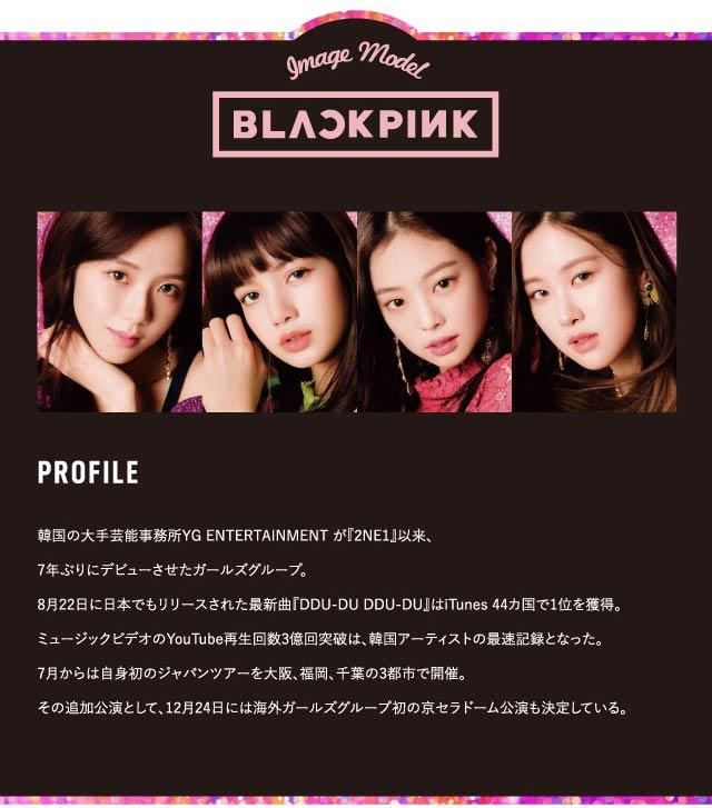 クルームCRUUM韓国アーティストのブラックピンクBLACKPINKのプロフィール