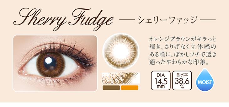 シェリーファッジ詳細画像,オレンジブラウンがキラっと輝き、さりげなく立体感のある瞳に。ぼかしフチで透き通ったやわらかな印象