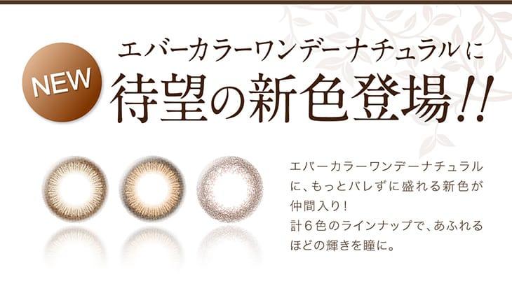 エバーカラーワンデーナチュラルに新色が登場|沢尻エリカイメージモデルのワンデーカラコン全6カラー