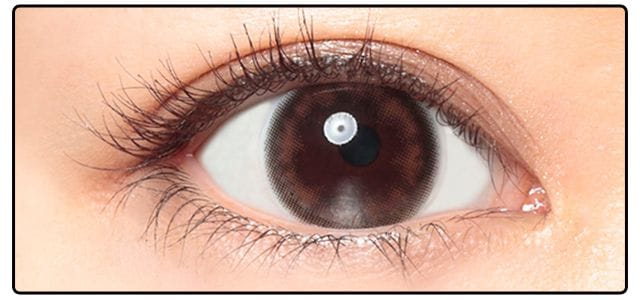 デイリーベーシックブラウン|黒目の発色
