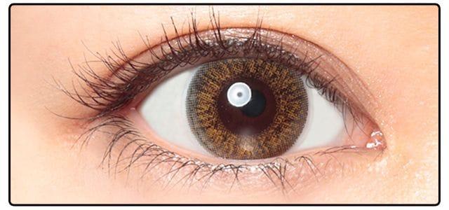 ホリデーヘーゼル|黒目の発色