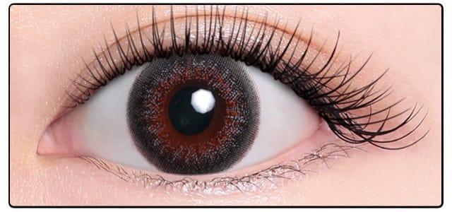 ベルベットグレー|黒目の発色