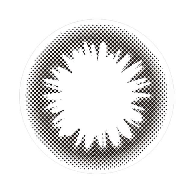 102-BK レンズ画像