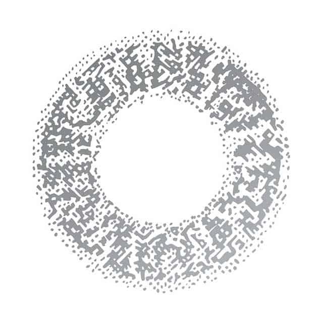 01GR ワントーングレー レンズ画像
