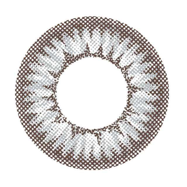 フレスカグレー レンズ画像
