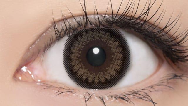 ブラック+ブラウン 装用画像