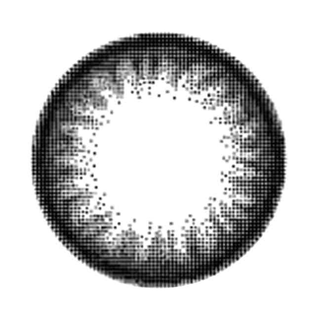 ビギナーブラック レンズ画像