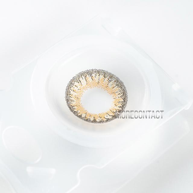 ダイヤワンデー アメリアヘーゼル(7)