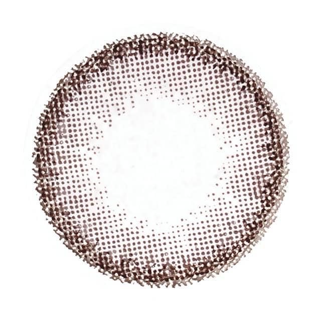 チョコブラウン レンズ画像