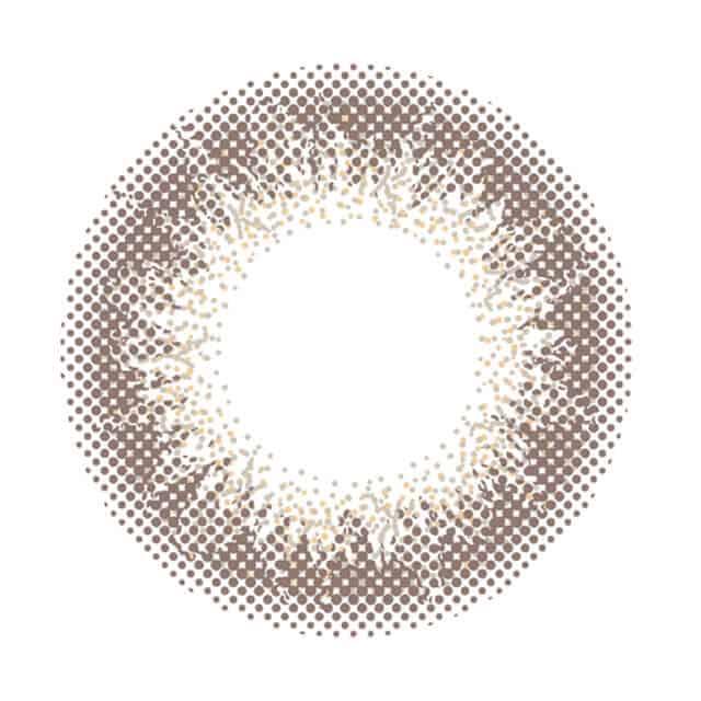 アンヴィシャンパングレイ レンズ画像