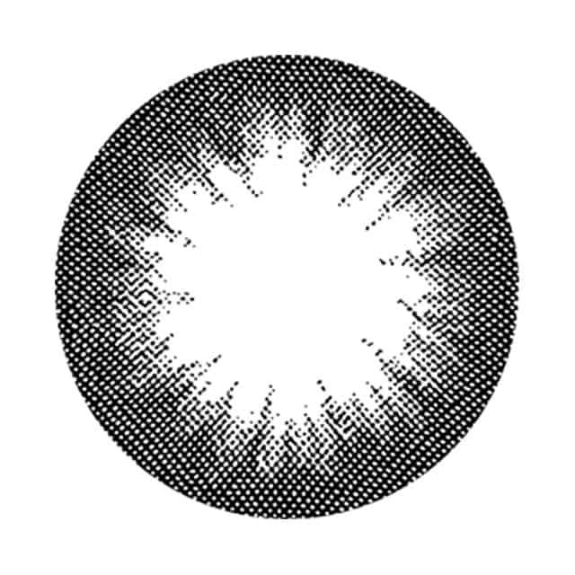 ロータスブラック レンズ画像