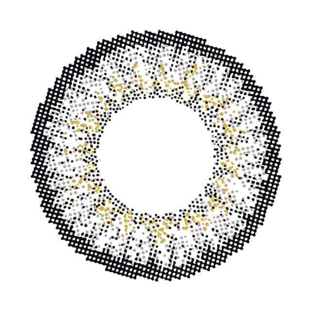 コンフォートグレージュ レンズ画像