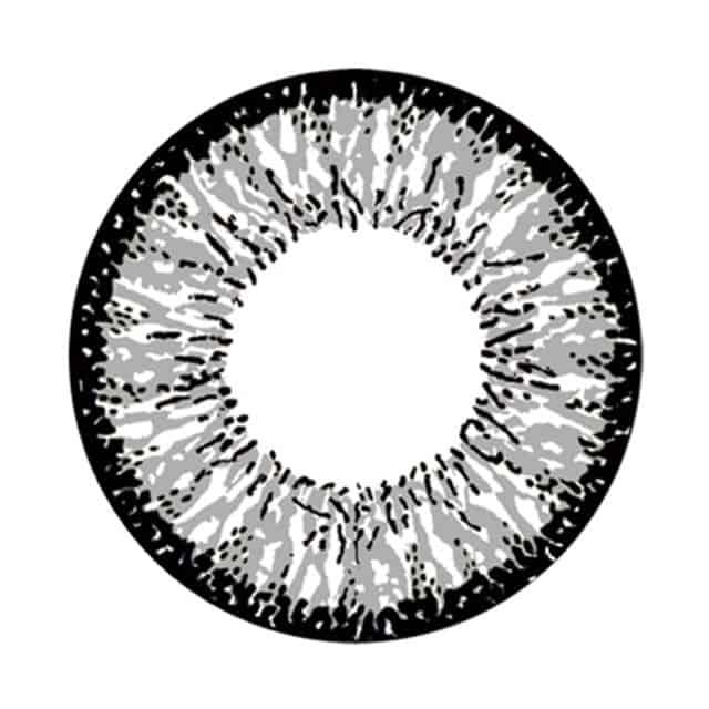 ノーブルグレー レンズ画像