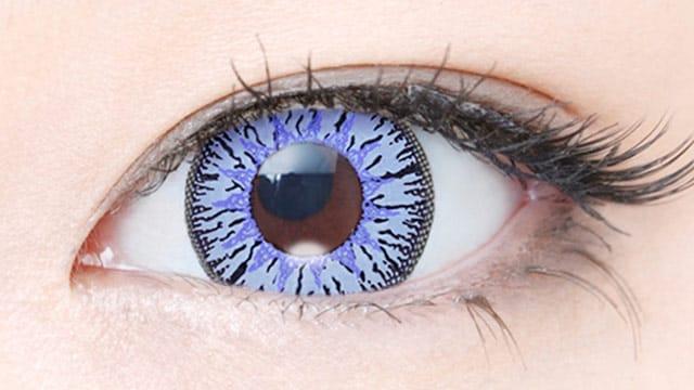 紫陽花 装用画像