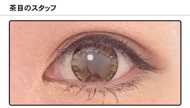 QuoReフレスコ|アイスブラウンDIA14.5mm