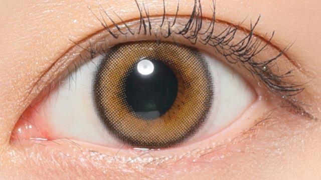 レヴィアワンデー(カラー) プライベート01 レンズ画像