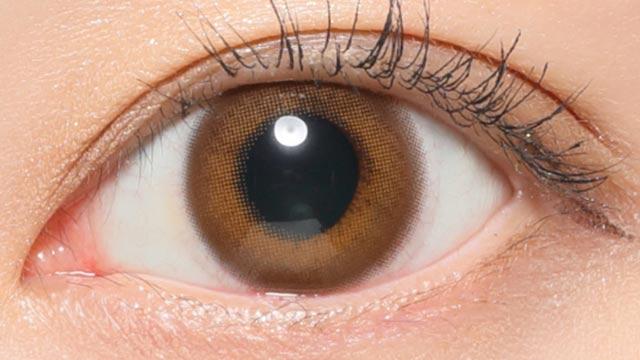 レヴィアワンデー(カラー) プライベート02 レンズ画像