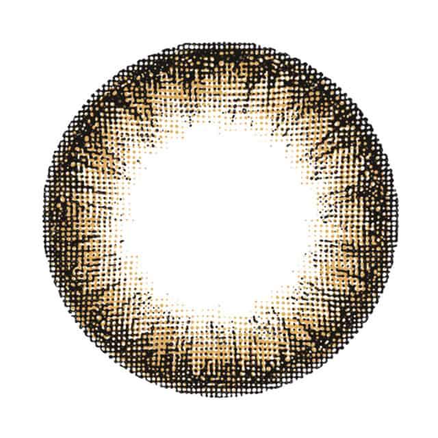 レヴィアワンマンス(カラー) ペニーコーラル(3)