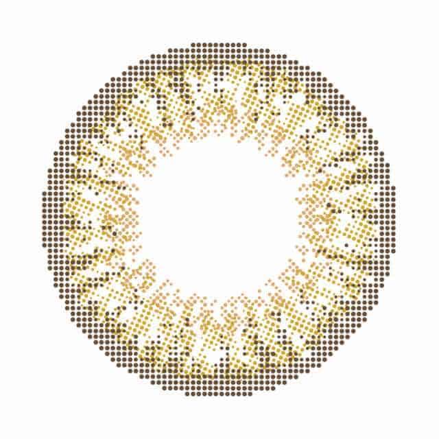 モテコンアネコンワンデー全色セット(2枚×4カラー)